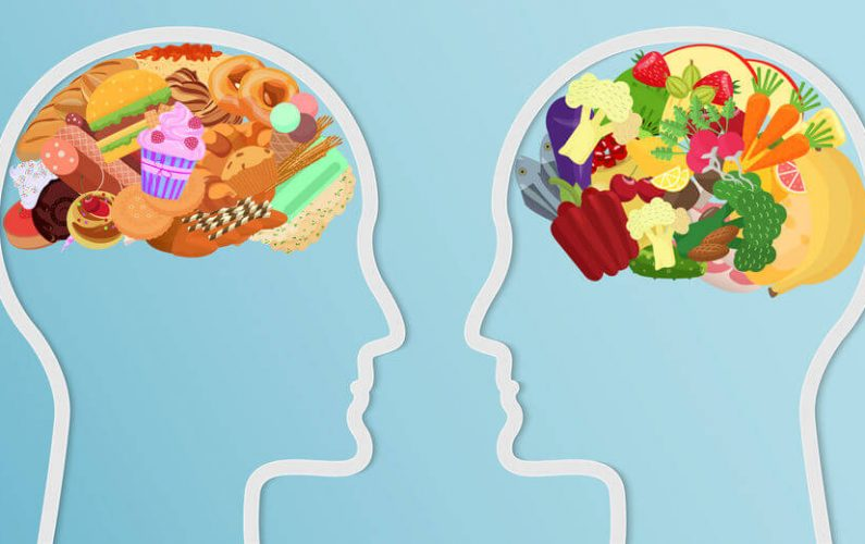 What Is The Main Function Of Fats In The Brain?